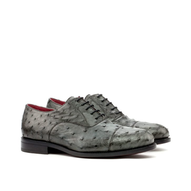 Ostrich Oxford Shoes OZZY